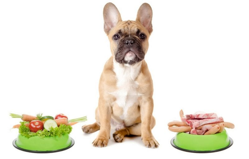 healthy_food_for_dogs
