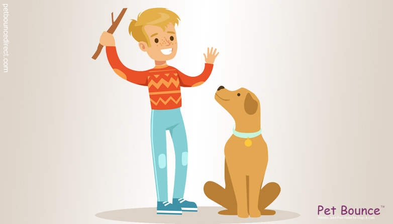 The Do's And Don't's Of Dog Obedience Training