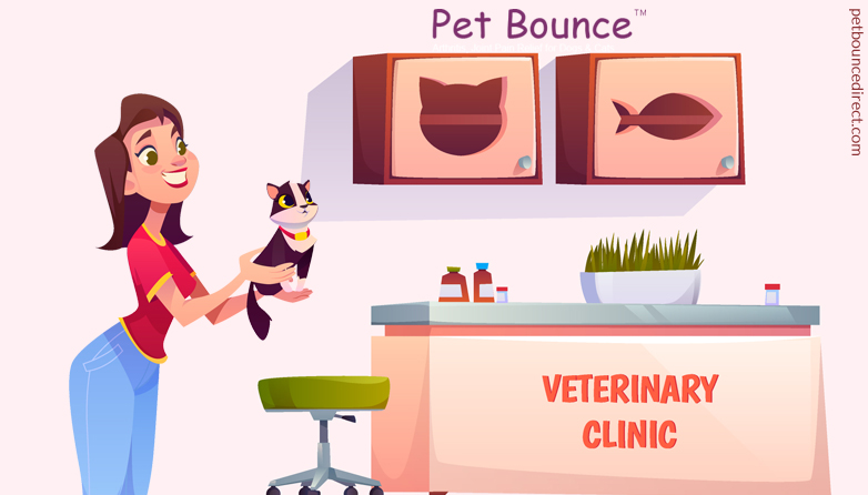 When To visit Your Pet Vet Clinic?